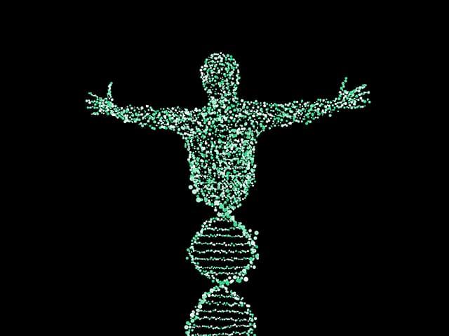 genética importancia