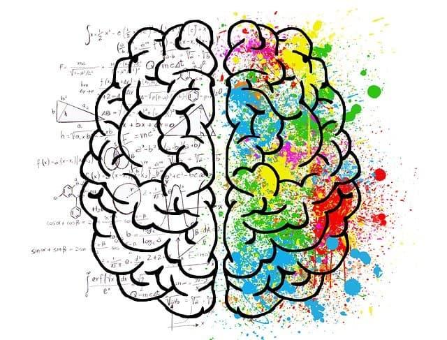 psicología social carreras en línea