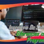 Ingeniero De Software. Diferencia Con Un Programador