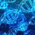 La Carrera De Genética Molecular